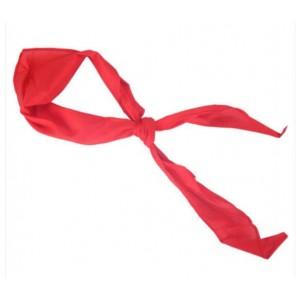 1.2米ASCN9523晨光红领巾 单位: 条