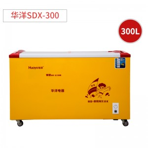 华洋 冰淇淋柜冷藏柜 SDX-300 铜管 曲体内置 1250*700*840mm 双门式 300L 二级能效 电脑控温 直冷 定频