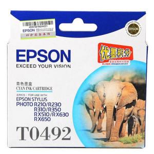 EPSON/爱普生 T0491 黑色 1 支 630 页 墨盒 适用机型见商品详情