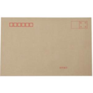 立信 230*160mm 7号 100g 100个/包 牛皮纸信封(销售单位:包)
