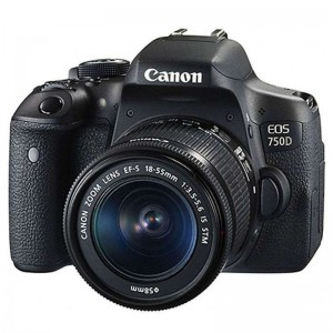 佳能 EOS 750D 黑色 单反套机 (EF-S 18-55mm f/3.5-5.6 IS STM镜头)